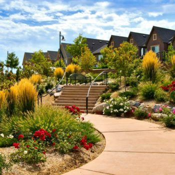 Castle Rock, CO Residential Landscaping