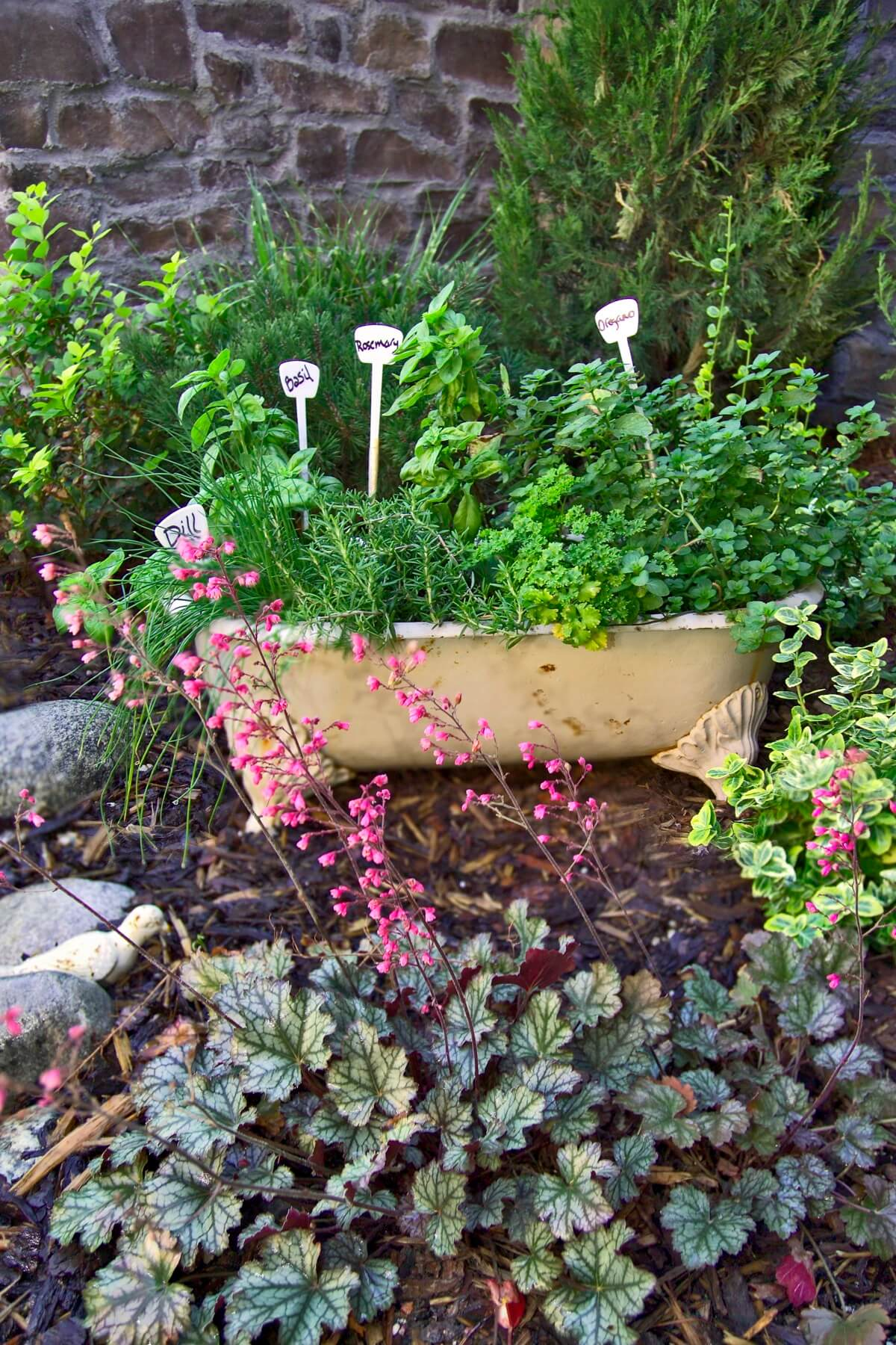 Castle Rock, CO Sustainable Landscaping Designer