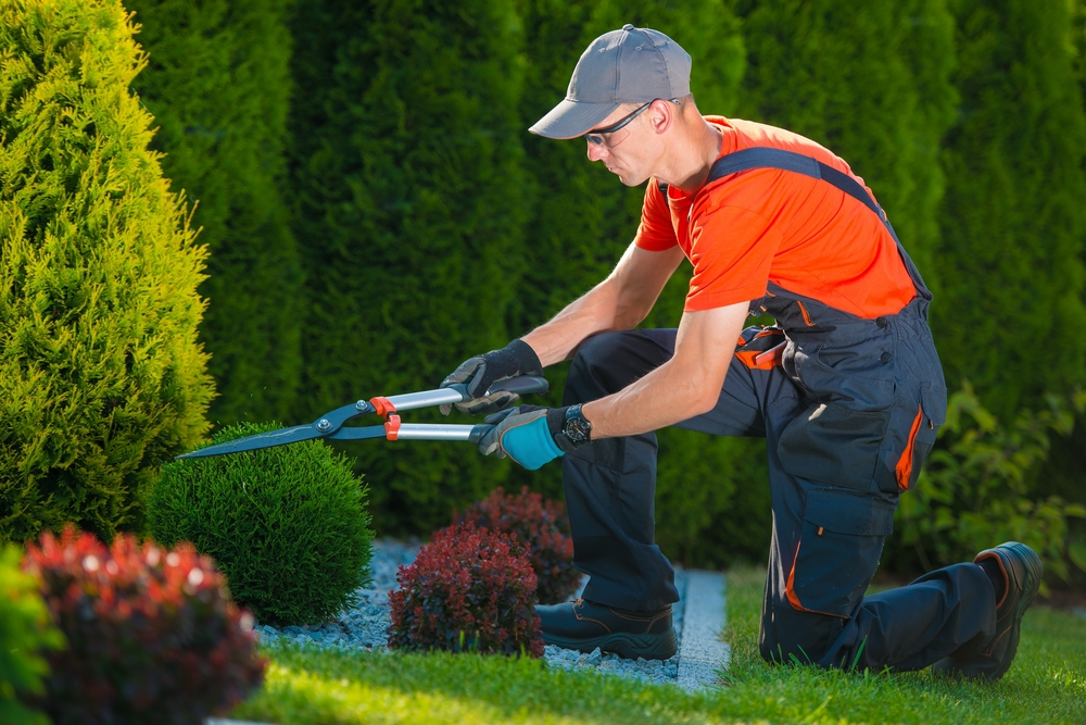 Landscaping Jobs in Parker, CO